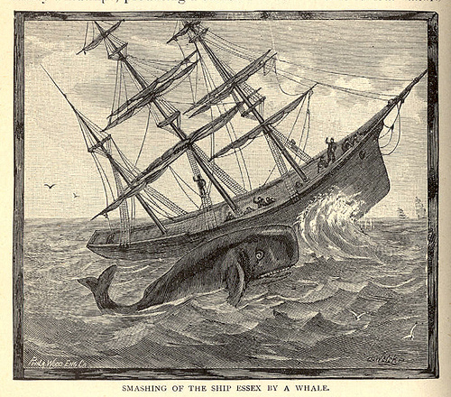 the Essex, an American whaling ship built in 1799