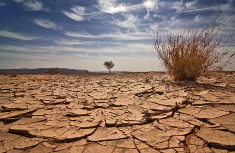 THE DESERTBYPATRICE - A hot desert