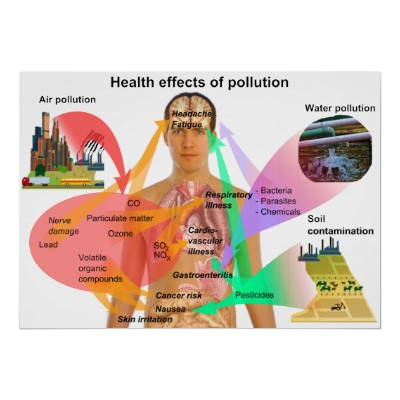 the effects of air pollution on humans and the environment Cite this chapter copy to clipboard yelda aydın türk and mustafa kavraz ( august 29th 2011) air pollutants and its effects on human healthy: the case of the city of trabzon, advanced topics in environmental health and air pollution case studies anca moldoveanu, intechopen, doi: 105772/20016 available from.