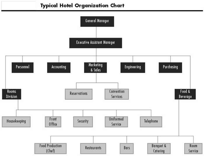 Presentation name on emaze - Organizational chart of front office department ...