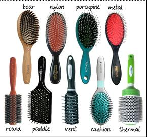 Hairbrush History On Emaze