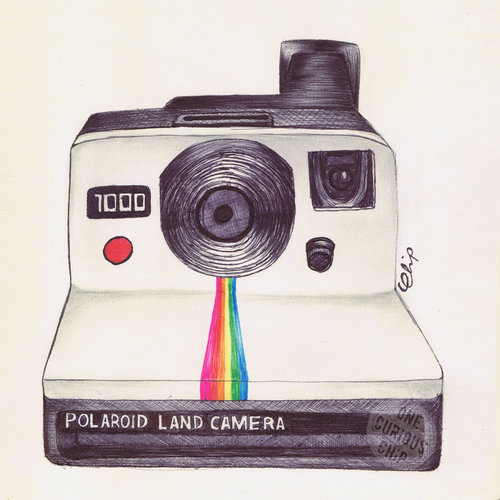 an overview of the polaroid corporation Land founded the polaroid corporation in 1937 to commercialise his  on  photography and football shape of light, review: clangorously dull.