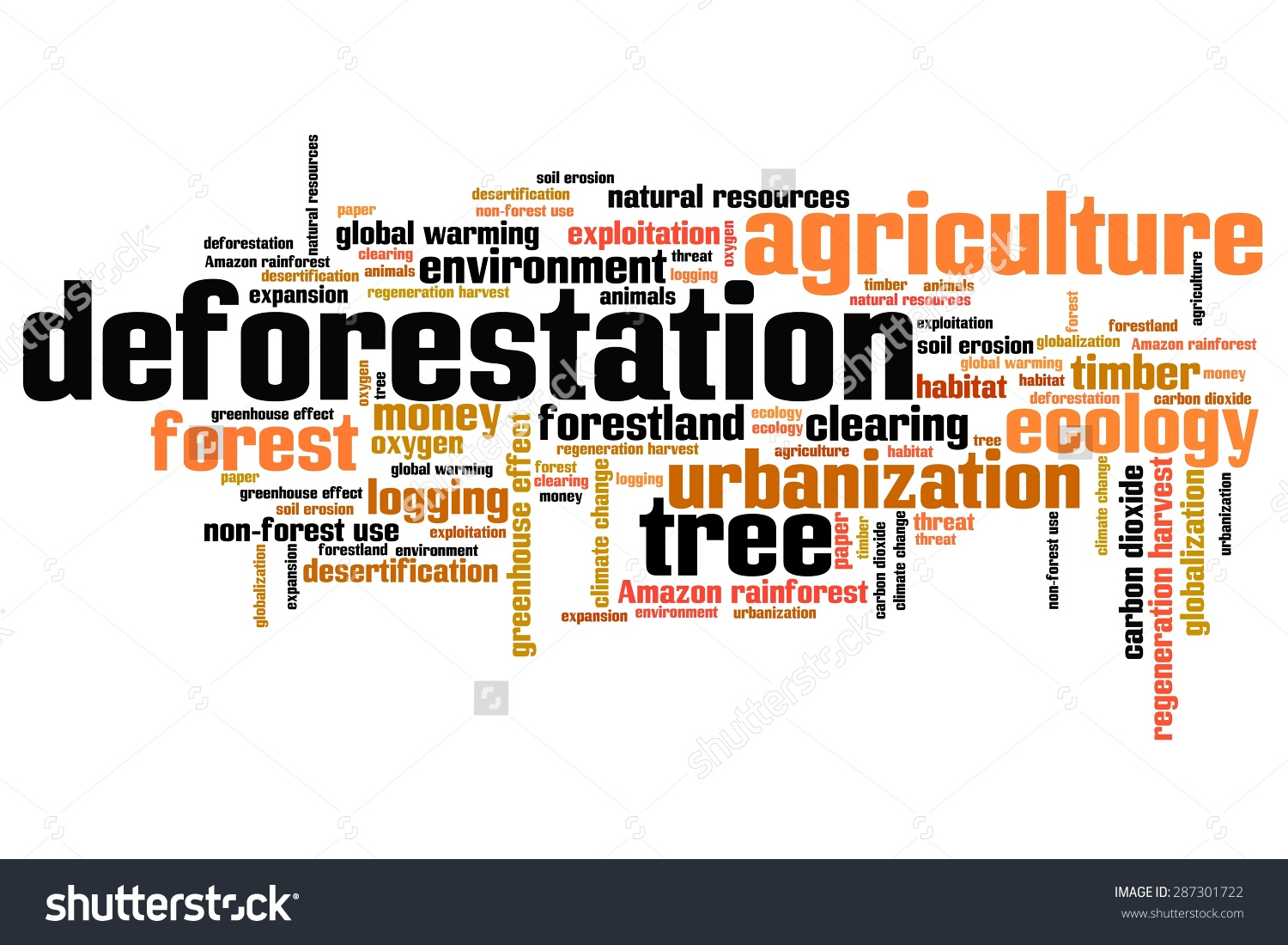pro deforestation essay Although deforestation is often thought of in a negative light, there are some benefits to the practice otherwise it wouldn't be occurring, right what we must do.
