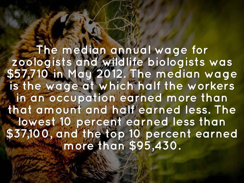 My future zoologist on emaze – Zoologist Job Description