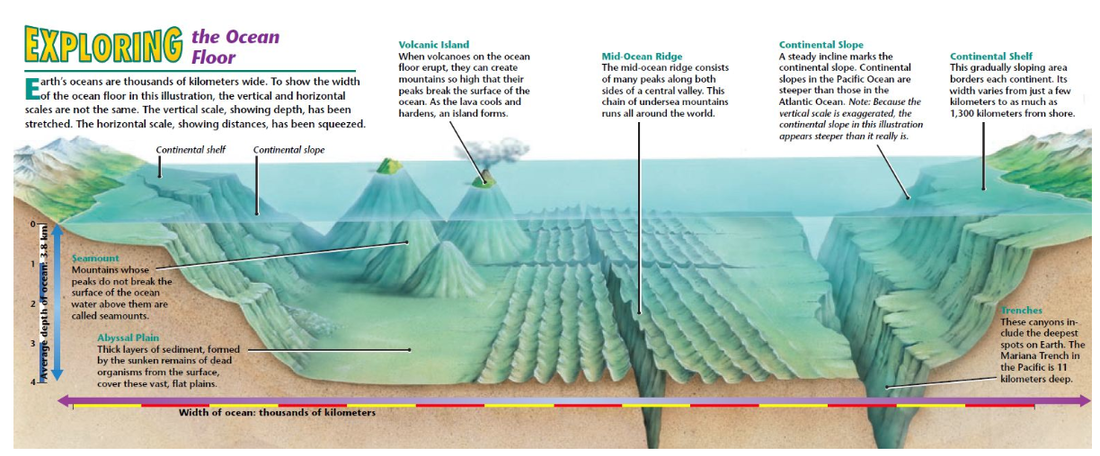 The Ocean Floor on emaze