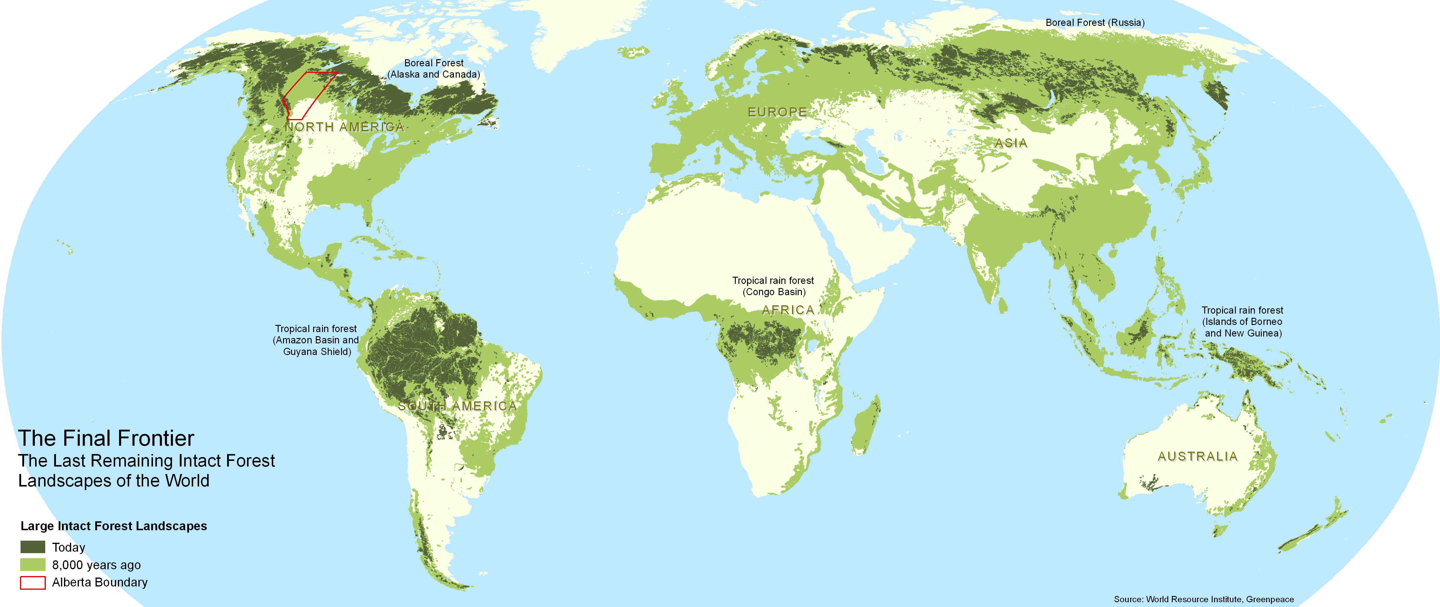 importance of tropical rainforests around the world