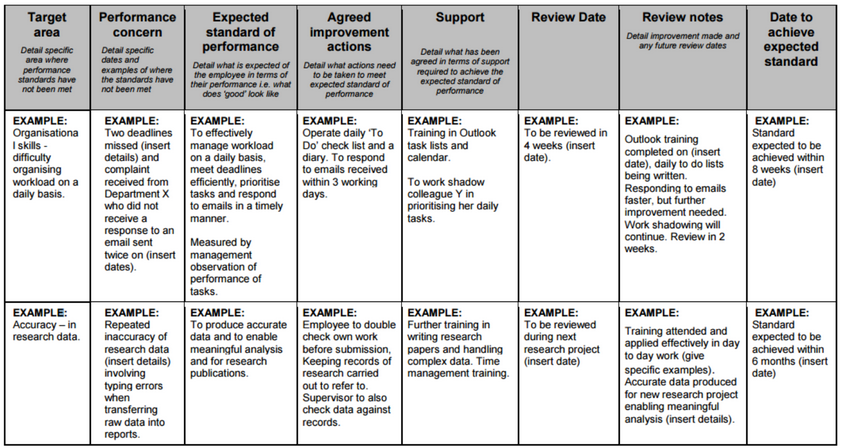 Performance Improvement Plan (sample)