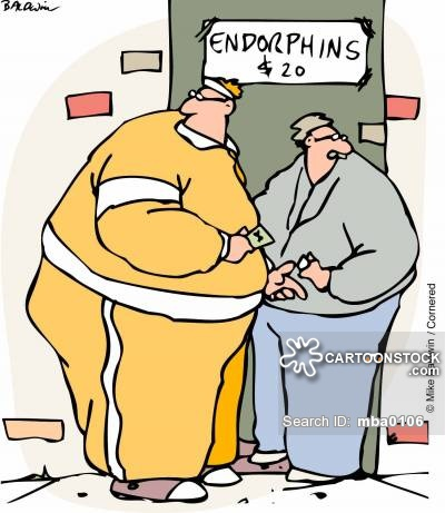 """ENDORPHINS """"Exercise high"""" on emaze"""