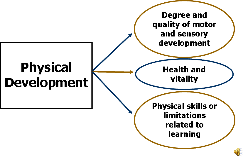 physical development during the prenatal stages essay Because these developmental changes may be strongly influenced by genetic factors and events during prenatal life, genetics and prenatal development are usually included as part of the study of child development.