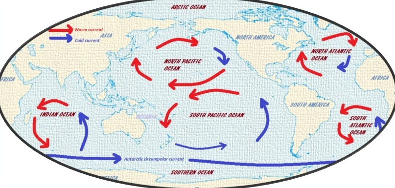 Major Ocean Currents Of The World Map.All About Major Cold And Warm Global Ocean Currents Fofwebcom Www