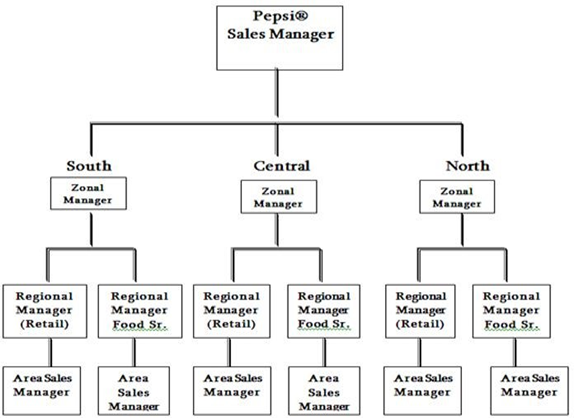 organisational structure of pepsi co As per the diagram above, pepsico is a decentralised structure with each markets and business units independent to make decisions but.