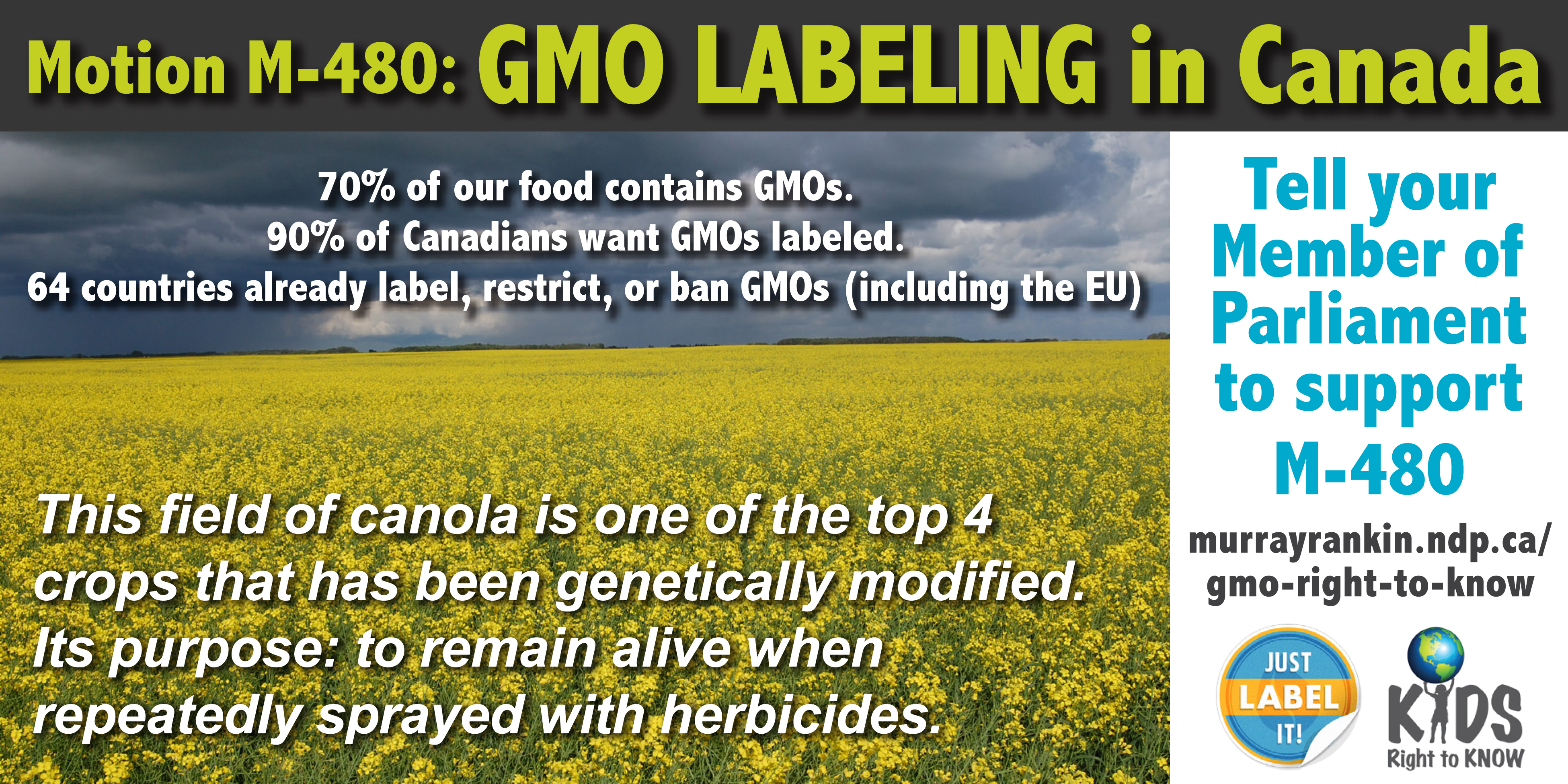 genetically modified food in canada essay The tools you need to write a quality essay or term paper essays related to health and genetically modified foods 1 genetically modified food is very.
