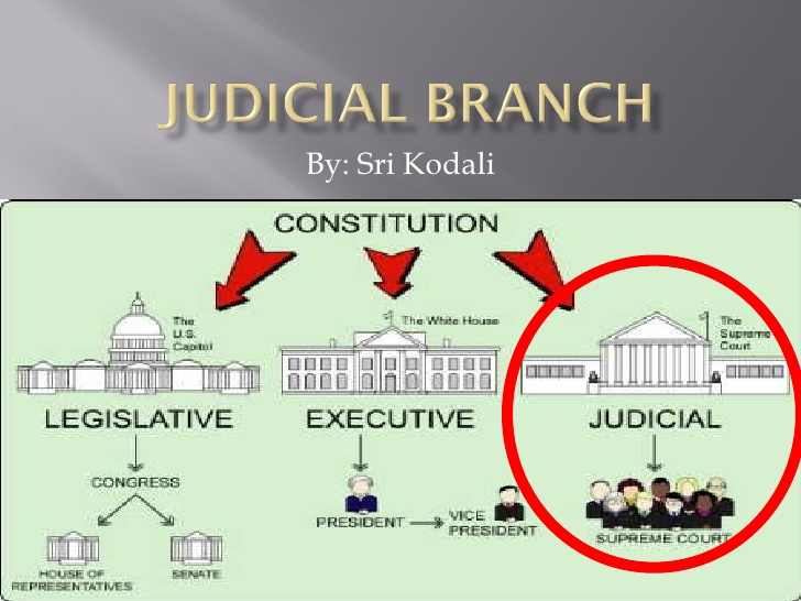 an analysis of the three separate branches of power in the us Forty state constitutions specify that government be divided into three branches the constitution of the united states of power and provide.