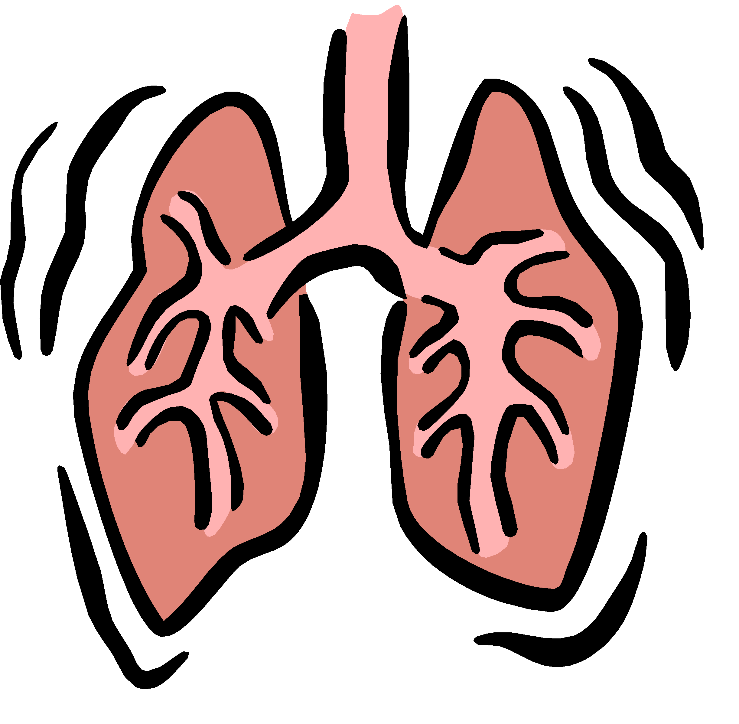 Image Gallery lung breathing cartoon