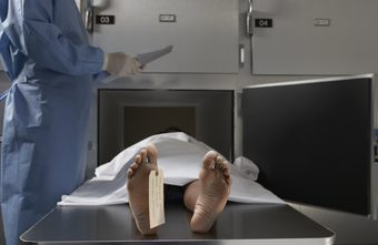 morgue assistant daily activities