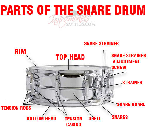 percussion instrumental handbook rh sites google com snare drum stand parts diagram Labeled Diagram of a Bass Drum