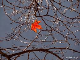 the last leaf thematic analysis co the last leaf yes is a famous short story by o henry but image of on romeo and juliet photo essay on emaze