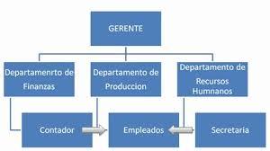 Estructura Formal E Informal