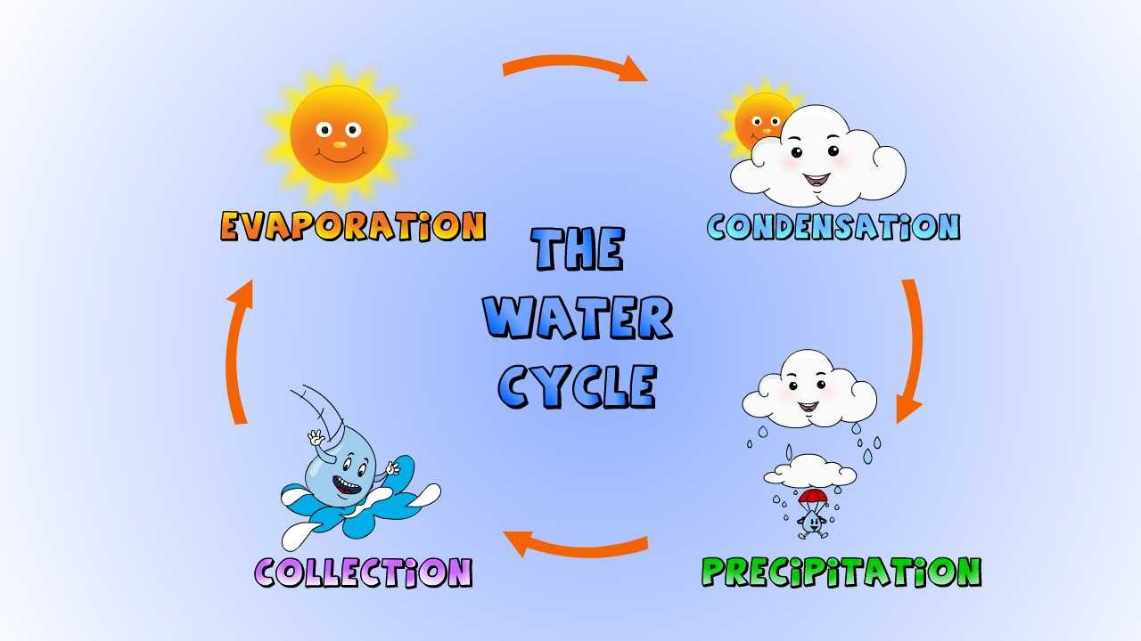 Draw water cycle gravity flush diagram pooptronica
