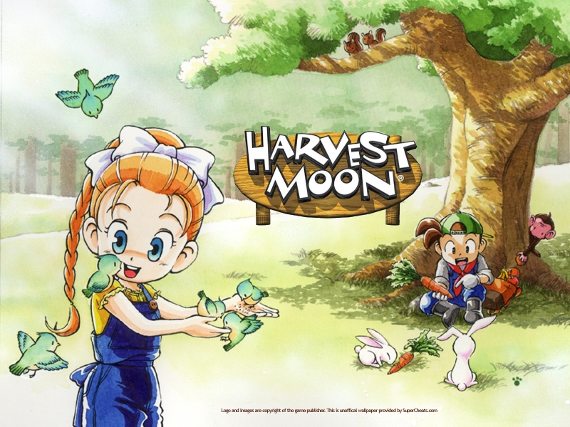 Download harvest moon back nature bahasa indonesia psx iso.