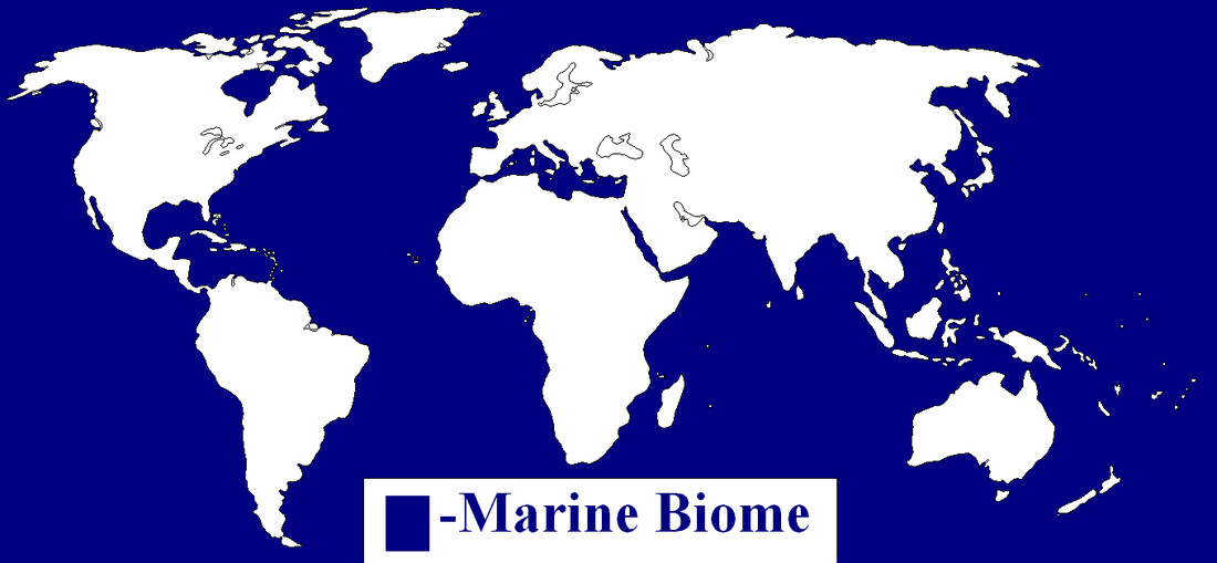 Beautiful Pictures And Map Of The Marine Biome