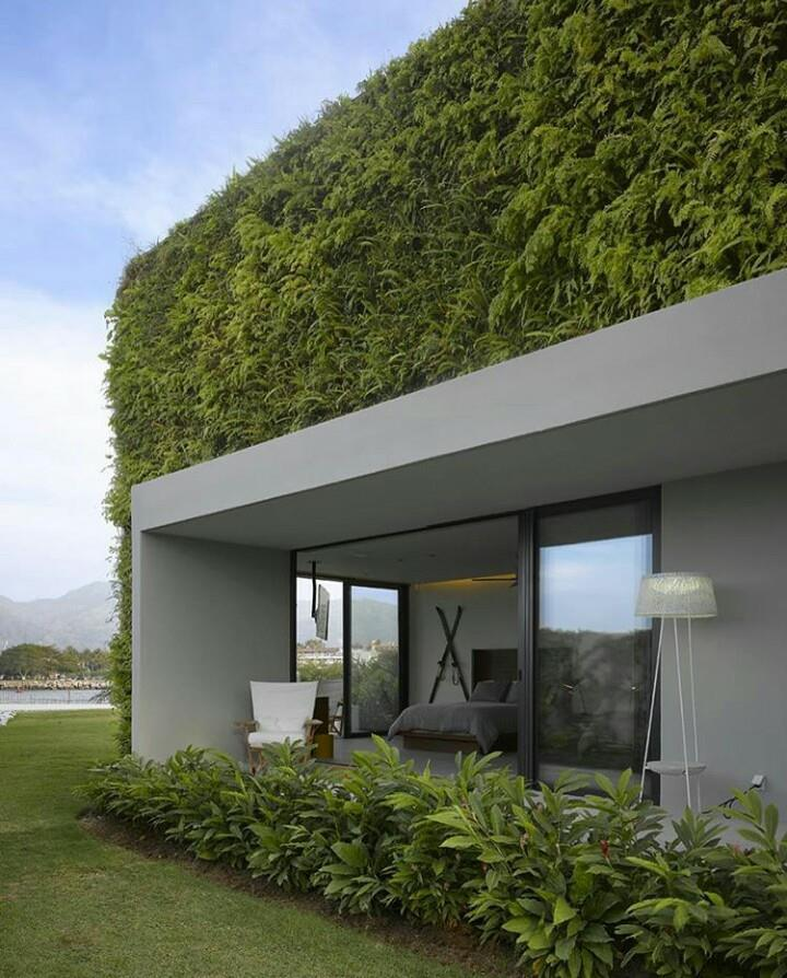 Muros y techos verdes on emaze for Muros verdes beneficios