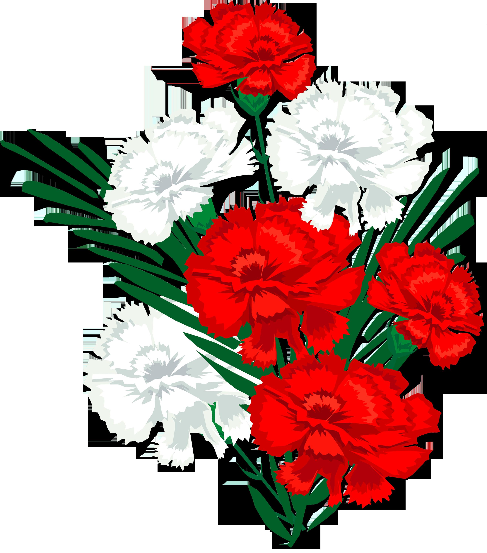 Открытки, картинки анимация цветы гвоздики