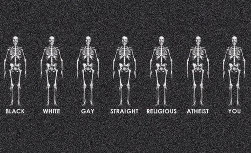 Resultado de imagen de igualdad de razas
