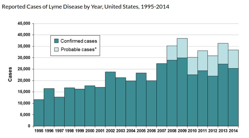 Lyme Diseaseby On Emaze