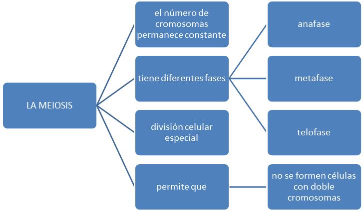 Estructura Semántica De Los Textos