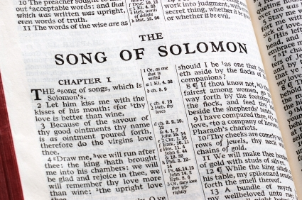 Image result for book of song of songs image