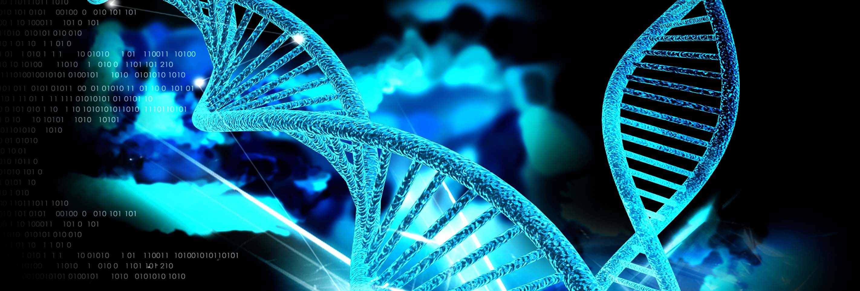 dna and evidence The dar accepts y-dna evidence in support of new member applications and supplemental applications y-dna evidence submitted along with other documentation will be considered along with all of the other source documentation provided to prove heritage.