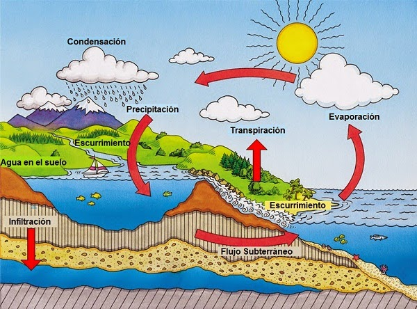 Resultado de imagen de El ciclo del Agua