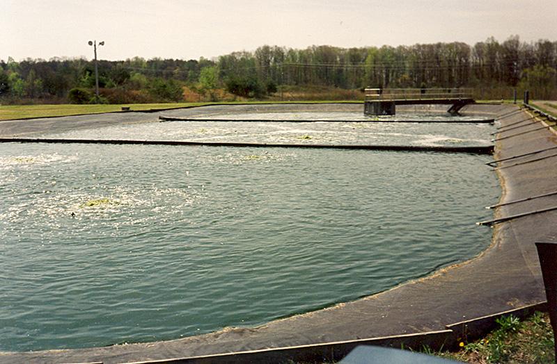 Waste Stabilisation Ponds Biological Wastewater Treatment