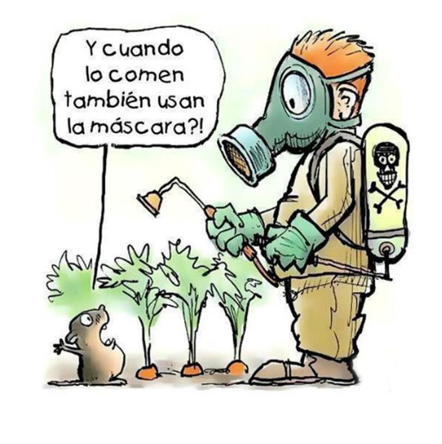 La contaminaci n de los alimentos - Fuentes de contaminacion de los alimentos ...