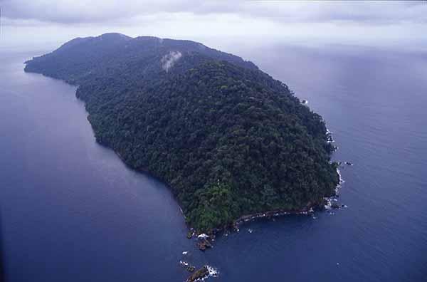 """Resultado de imagen para isla gorgona"""""""