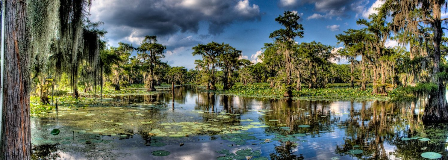 Caddo lake on emaze for Caddo lake fishing report
