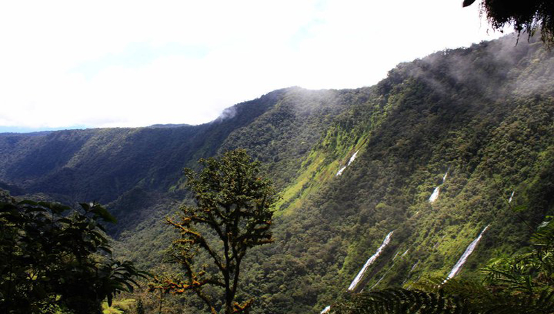 Equatorial on emaze moca valley moca valley is home to plenty of natural attractions including lake biao lake loreta and the famous cascades of moca which house different sciox Choice Image