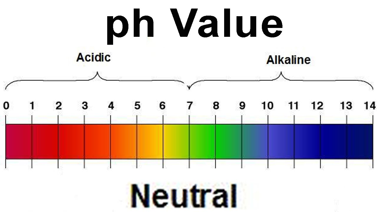 32  Great Ph Scale For for Ph Scale Horizontal 1-14  557ylc