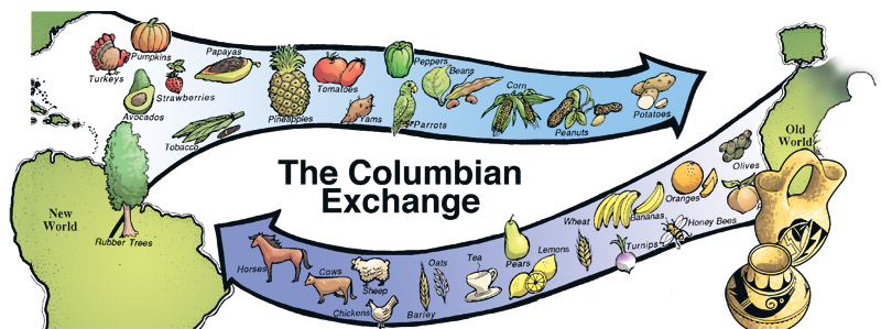 an analysis of the colombian exchange and the principles of food in colombia The columbian exchange was the widespread transfer of no coffee in colombia  the columbian exchange video, study guide, analysis, and teaching guide.