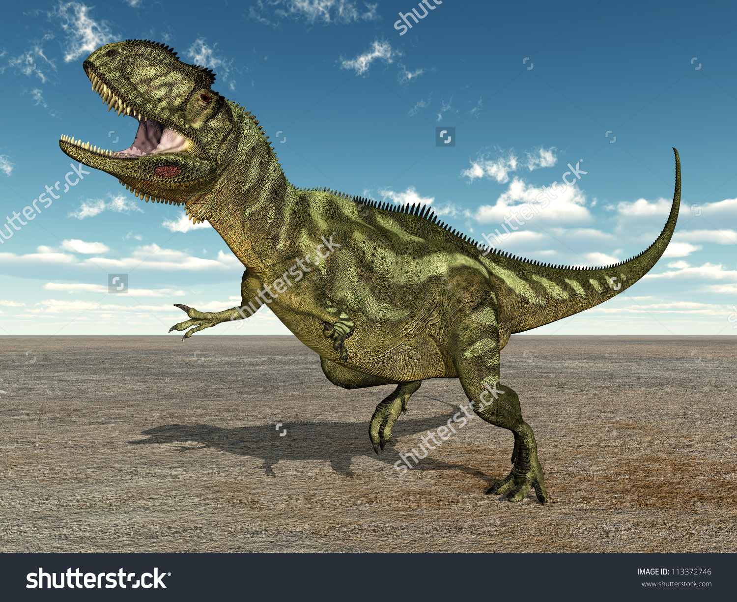 The Yangchuanosaurus b...