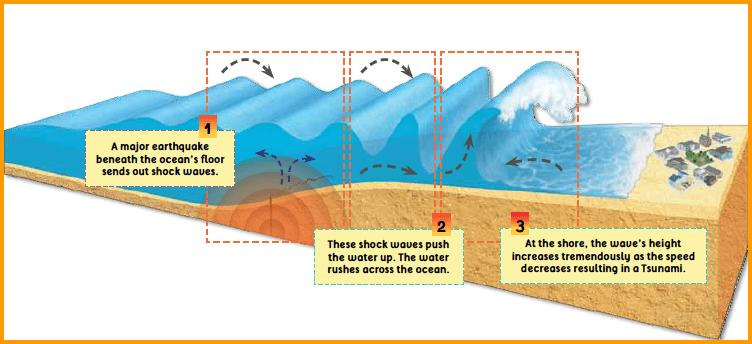 Image Gallery Indian Ocean Tsunami Diagram