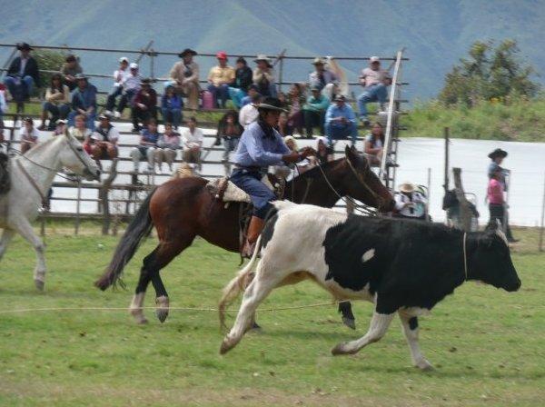 ARGENTINA - Argentina traditions