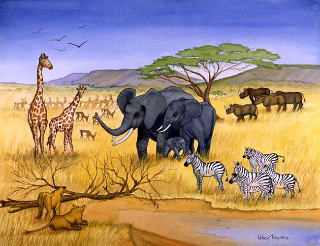 savanna biome on emaze