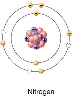 Nitrogen Chemistry Presentation On Emaze