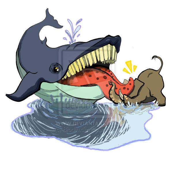Cuanto mide un corazón de una ballena on emaze