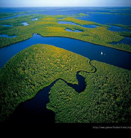 Resultado de imagen de cuenca del amazonas