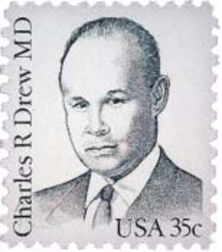 Image result for dr. charles drew