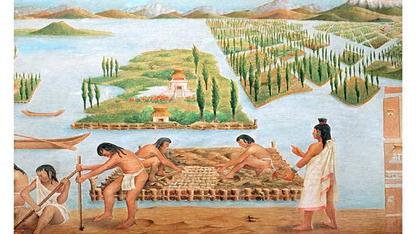 aztec agriculture techniques