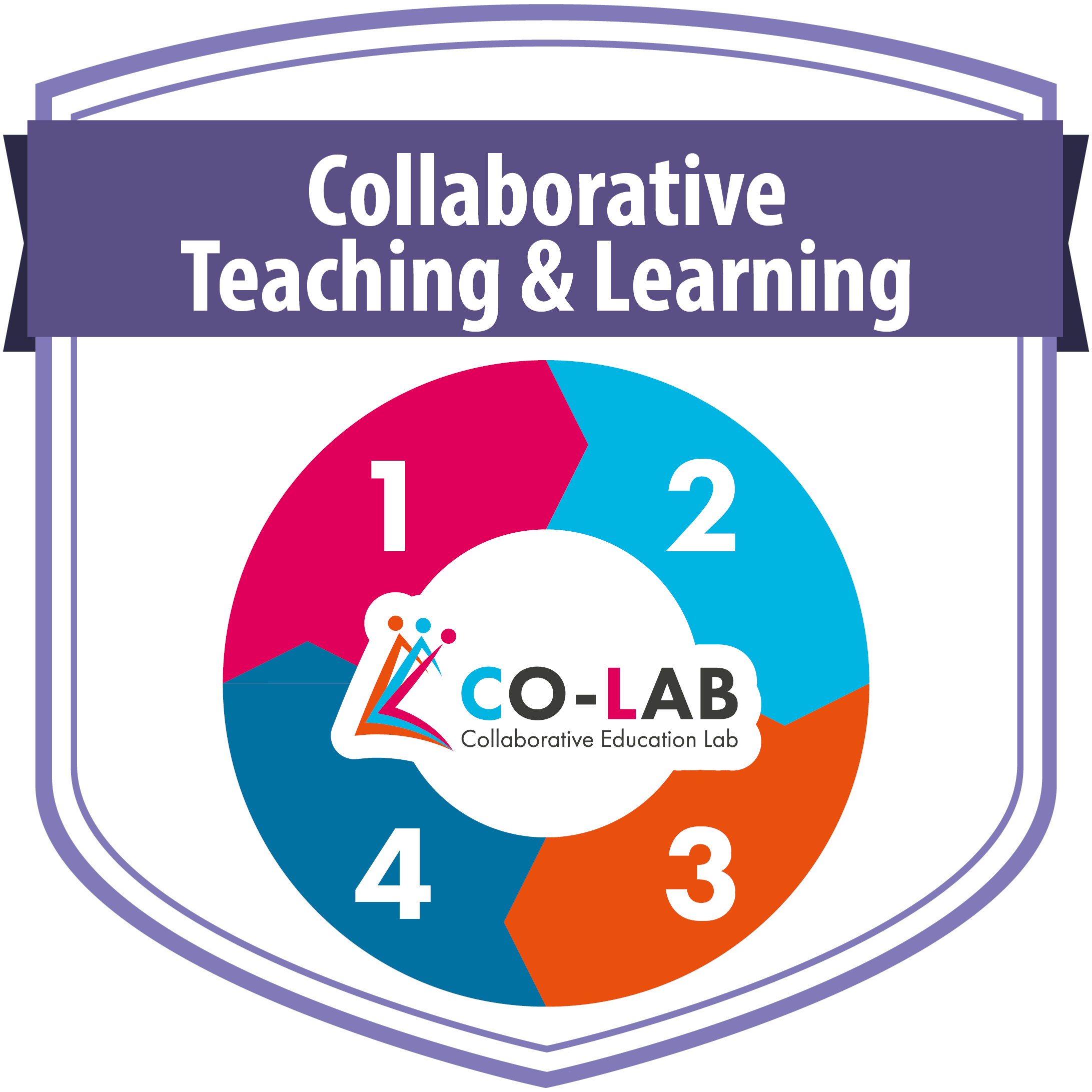 Collaborative Co Teaching : A learning diary